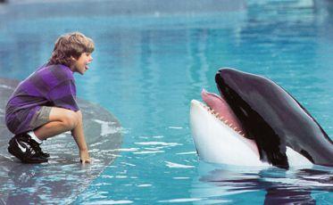 Zachraňte Willyho! (1993)