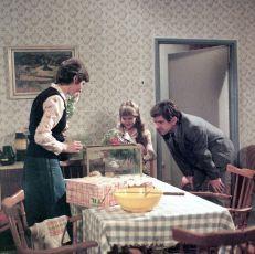 Tři cesty k domovu (1983) [TV minisérie]