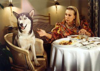 O zvířatech a lidech (1993) [TV seriál]