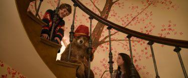 Medvídek Paddington (2014) [2k digital]
