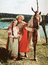 Finist, jasný sokol (1975)