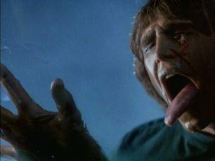 Curse II: The Bite (1989)