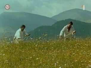 Tisícročná včela (1983)