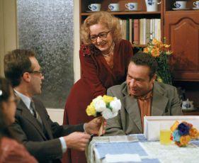 Jak jsem požádal svou ženu o ruku (1983) [TV epizoda]