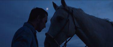 Jezdec (2017)