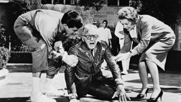 Roztržitý sanitář (1964)