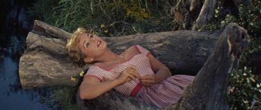 Uzavřená hra (1959)