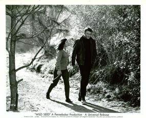 Wild Seed (1965)