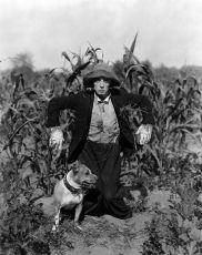 Frigo na námluvách (1920)