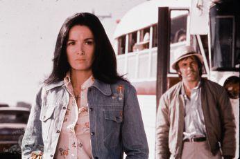 Mr. Majestyk (1974)