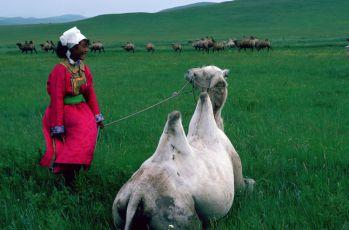 Mongolská Johanka z Arcu (1989)