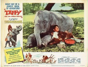 Taffy and the Jungle Hunter (1965)