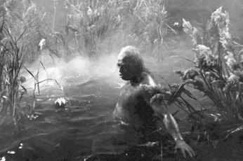 Josef Hlinomaz jako vodník