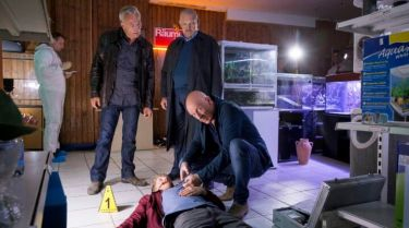 Tatort: Wacht am Rhein (2017) [TV epizoda]