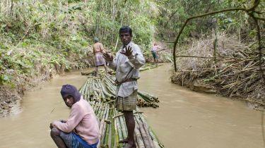 Příběhy z bambusu (2019)