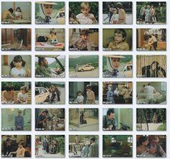 Safari (1986) [TV seriál]