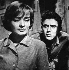 Vyšší princip (1960)