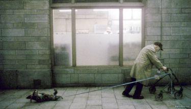 Ty, který žiješ (2007)