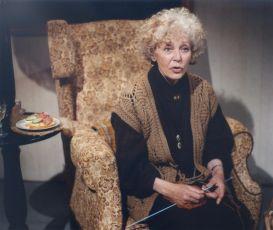 Motýl na anténě (1991) [TV film]
