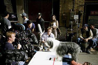 Chundelatý pes (2006)