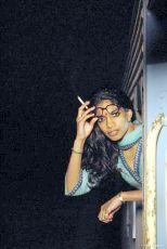 Darjeeling s ručením omezeným (2007)