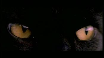 Černá kočka (1981)