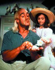Pan Chůva neboli osobní strážce (1992)