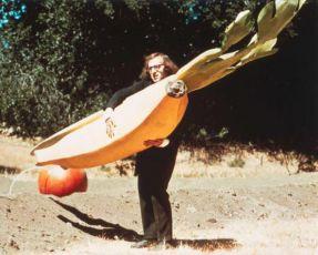 Spáč (1973)