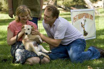 Nesahejme psům na párky (2006)