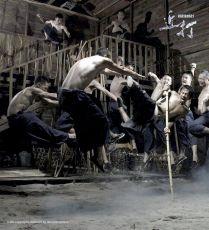 Kinta (2008)