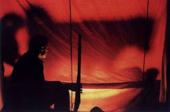 Sokoli (2002)