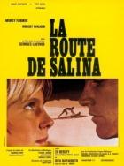 Cesta do Saliny