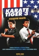 Karate tiger 3: Pokrevní bratři (No Retreat, No Surrender 3: Blood Brothers)