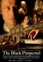Převrat (The Black Pimpernel)