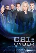 Kriminálka: Oddělení kybernetiky (CSI: Cyber)