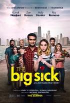 Pěkně blbě (The Big Sick)