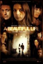 Život je krásný (A Beautiful Life)