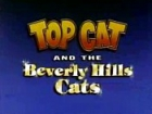 Top Cat:and the Beverly Hills Cats