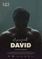 El perfecto David