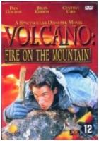 Sopka: Hořící sníh (Volcano: Fire on the Mountain)