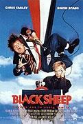 Černá ovce (Black Sheep)