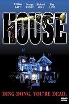 Dům (House)