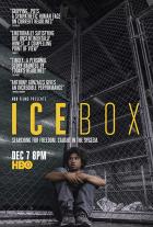 Chladné přijetí (Icebox)
