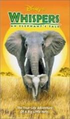 Příběh malého slona