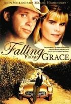 Upadnout v nemilost (Falling from Grace)