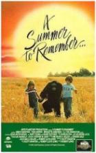 Nezapomenutelné léto (A Summer to Remember)