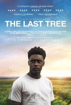 Poslední strom (The Last Tree)