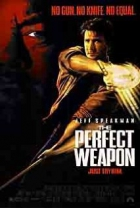 Ideální zbraň (The Perfect Weapon)