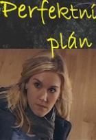 Perfektní plán (Perfect Plan)