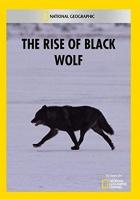 Vzestup černého vlka (The Rise of Black Wolf)